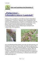 Fließgewässer – Lebensadern unserer Landschaft - Verein für Natur ...