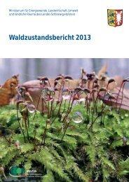 Waldzustandsbericht 2013 - Nordwestdeutsche Forstliche ...