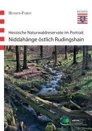Niddahänge östlich Rudingshain - Nordwestdeutsche Forstliche ...
