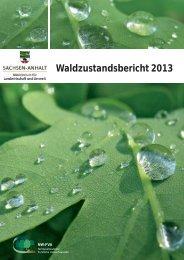 Waldzustandsbericht Sachsen-Anhalt 2013 - Nordwestdeutsche ...