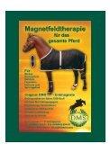 Pferdehaltung Ausrüstung Topsport Ausbildung - Euroriding - Seite 2