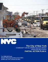 Partial Action Plan - NYC.gov