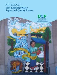 New York City 2008 Drinking Water Supply and Quality ... - NYC.gov