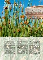 "Catalogo ""dormire Pedano""  - Page 6"