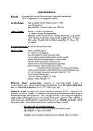 Testületi ülés jegyzőkönyve - Nyergesújfalu