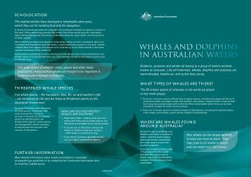 Whales and dolphins in Australian waters - Department of the ...