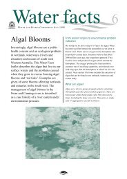 Algal Bloom Fact sheet - Department of Water - The Western ...