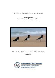Briefing note on beach nesting shorebirds - Northern and Yorke ...