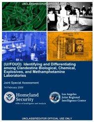 Download file - New York University