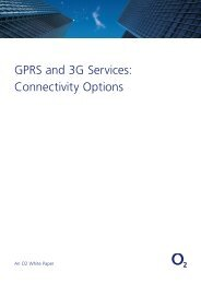GPRS and 3G Services: Connectivity Options - O2