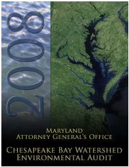 2008 Environmental Audit Report - Maryland Attorney General