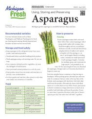 Asparagus - Using, Storing and Preserving