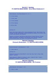 Spielberichte Saison 08/09 - FC Hertha Mescherin