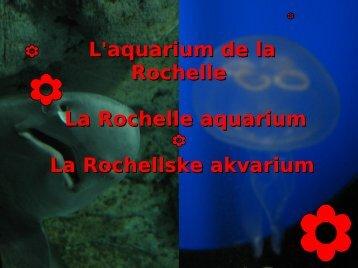 L'aquarium de la Rochelle La Rochelle aquarium La Rochellske ...