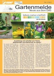 Gartenmelde - Ökologisch-Botanischer Garten - Universität Bayreuth