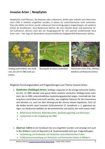 Invasive Arten Neophyten - Ökologisch-Botanischer Garten