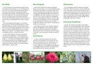 Der INTERREG-Flyer der Beratungsstelle für Obstbau und des KOGL