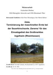 MEISTERARBEIT Gerhards.pdf - Obstbau - in Rheinland-Pfalz