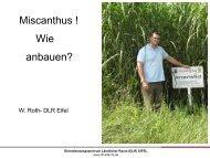 Düngung Miscanthus - Obstbau