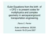 Euler equations in a#1813C8