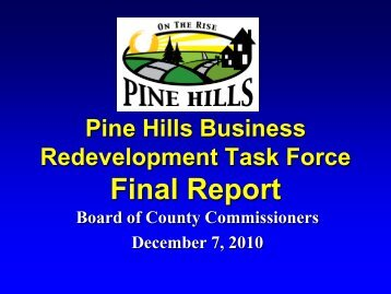 Discussion Pine Hills Business Redevelopment Task Force Final ...