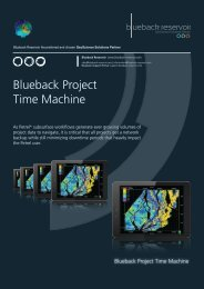 Blueback Project Time Machine Flyer - Ocean - Schlumberger