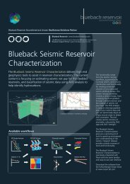 Blueback Seismic Reservoir Characterization - Ocean - Schlumberger