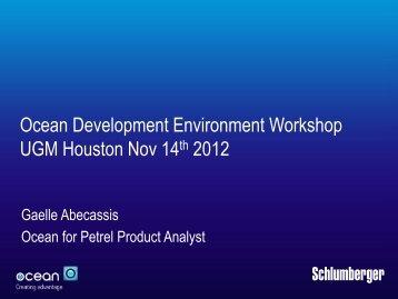 Ocean 2013.1 Petrel Presentation