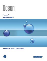 Ocean 2009.1 Petrel Customization - Ocean - Schlumberger
