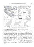 magellanic penguin - Universidad de Magallanes - Page 3