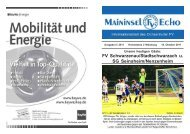FV Schwarzenau/Stadtschwarzach u. SG ... - Ochsenfurter FV