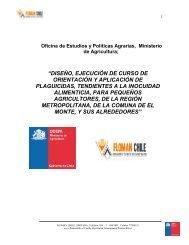 Informe Final del programa piloto - Odepa