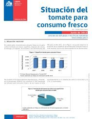 tomate para consumo fresco - Odepa