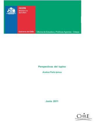 Perspectivas del lupino - Odepa