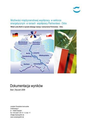 Możliwości międzynarodowej współpracy w sektorze ...