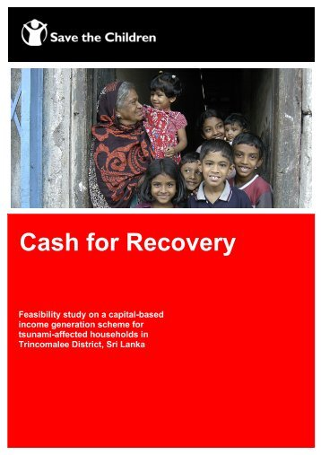 Feasibility study on a capital-based income generation scheme for ...