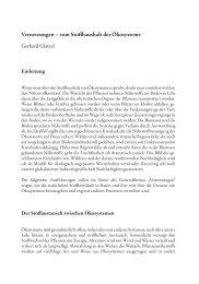 Download des kompletten Vortrages - Österreichische Akademie ...