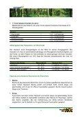Heizen mit Scheitholz - Seite 3