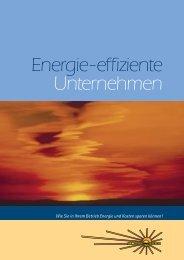 Energie-effiziente Unternehmen - OÖ Energiesparverband