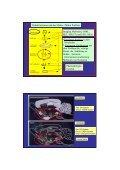 1. NEUROBIOLOGIE - Seite 2