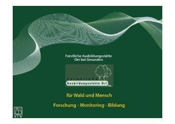 Motormanuelle Schlägerung - Ökosoziales Forum