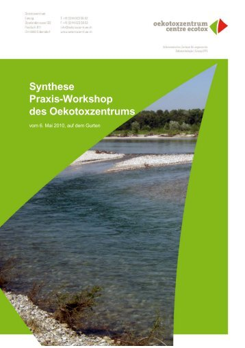 Synthese Praxis-Workshop des Oekotoxzentrums