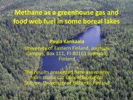 Methane as a greenhouse gas and food web fuel in some boreal lakes