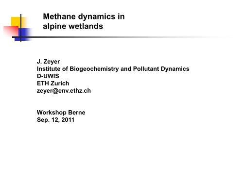 Methane dynamics in alpine wetlands