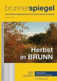 Brunner Spiegel 03/10 - Österreichische Volkspartei Brunn am ...