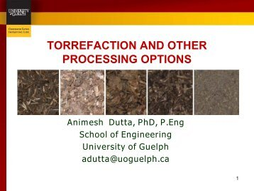 torrefaction and other processing options - Ontario Federation of ...