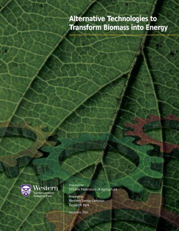 Alternative Technologies to Transform Biomass into Energy - Ontario ...