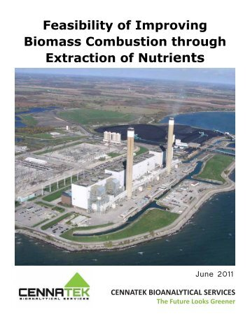Feasibility of Improving Biomass Combustion through Extraction of ...
