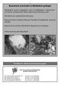 Mitteilungsblatt kw 30-2012.pdf - Zell-Weierbach - Page 3