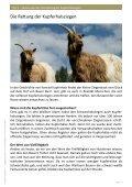 Konrad Kupferhals - Orell Füssli - Page 4